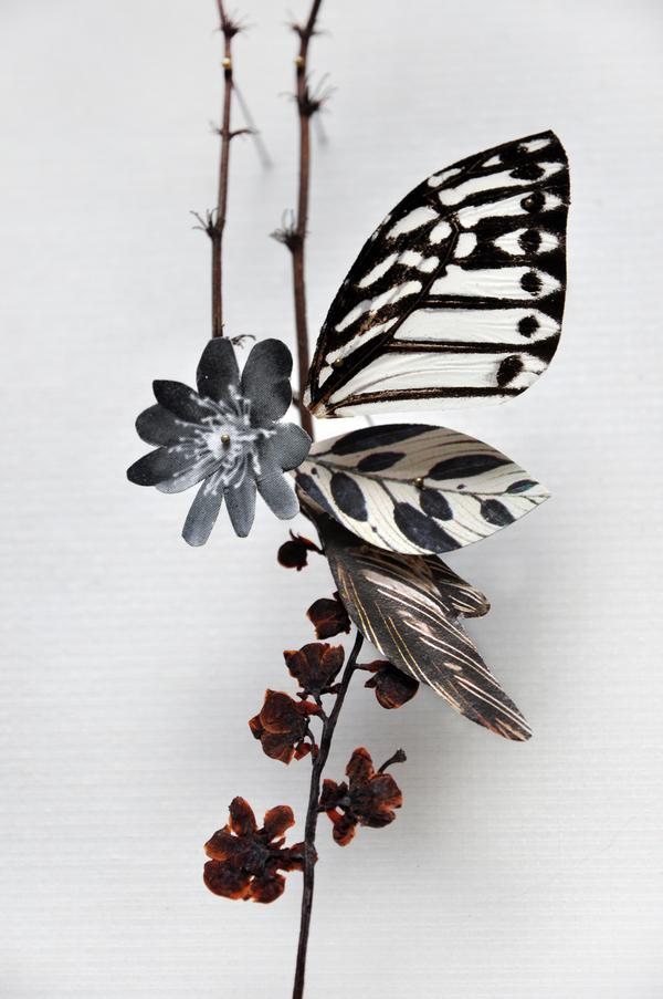Beautiful Flower Illustrations for designers Inspiration 10