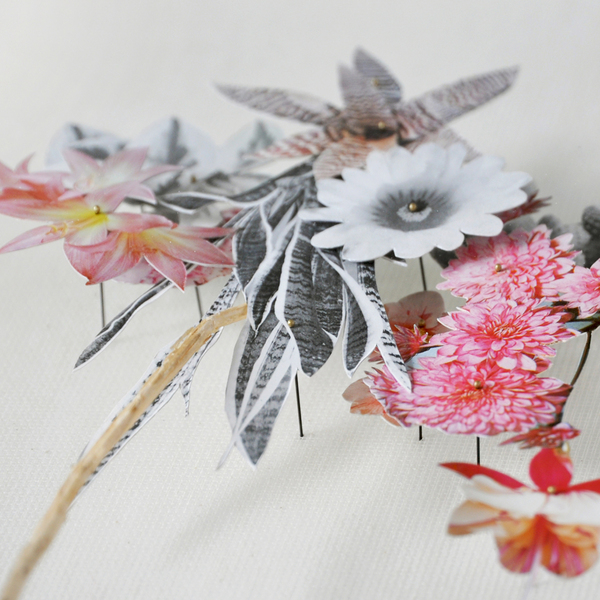 Beautiful Flower Illustrations for designers Inspiration 12