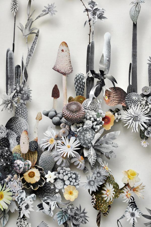 Beautiful Flower Illustrations for designers Inspiration 6