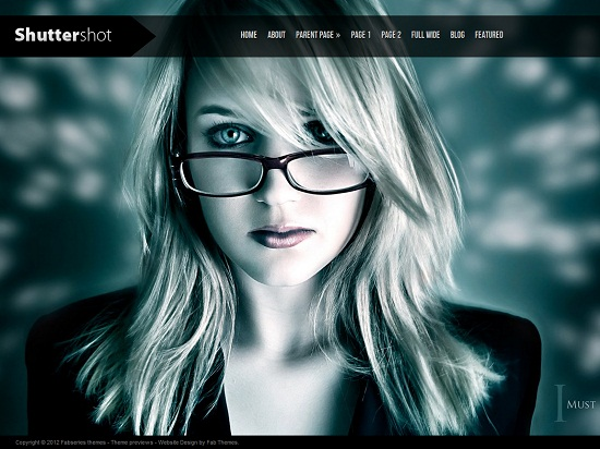 25 Free High Quality WordPress Themes 2
