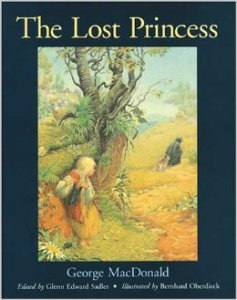 lost princess book cover