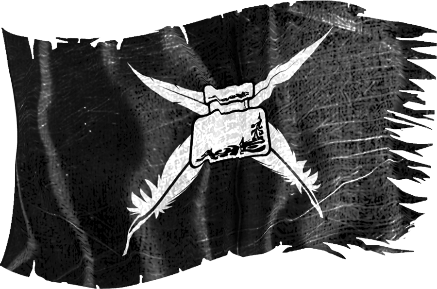writers pirate flag