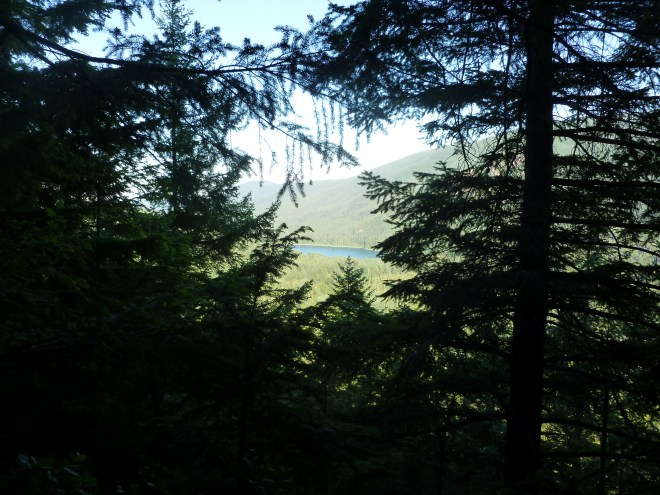 West view, Rattlesnake Lake