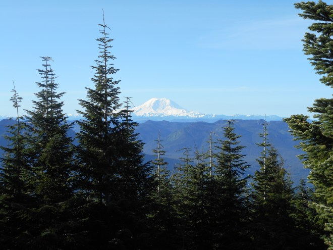 Rainier from Blow Down summit area