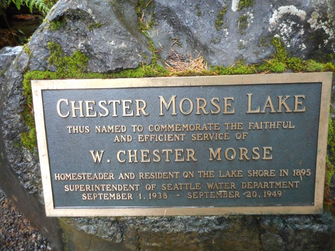 About Chester Morse