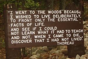 Den kanskje aller mest siterte formuleringen Thoreau etterlot seg.