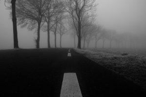 Smalle weg in koude mist
