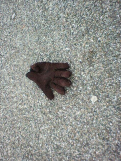 Handschoen op straat