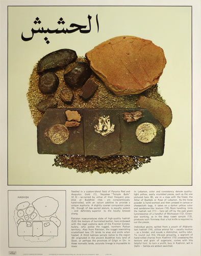 Connoisseurs Field Guide To 1960s Hashish And Marijuana