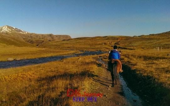 [冰島] 奔馳吧,冰島馬!馬背上的女漢子誕生。