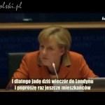 Farage do Merkel: Proponuję polubowny rozwód