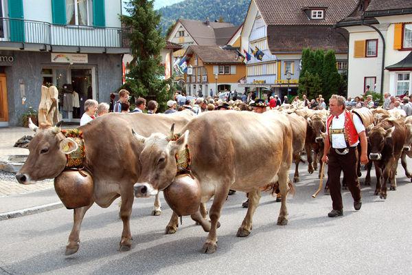 مهرجانات 2018 في سويسرا