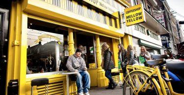 المقاهي في هولندا امستردام