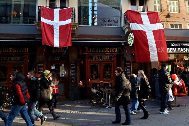 المؤسسات الحكومية والعمل في الدنمارك