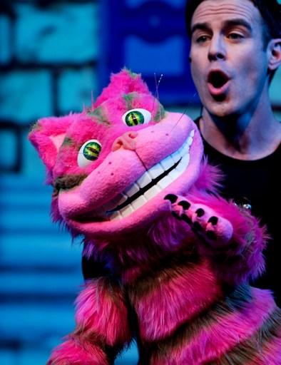 DLUX Ent Cheshire Cat Closeup