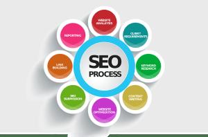 Search Engine Optimization Course