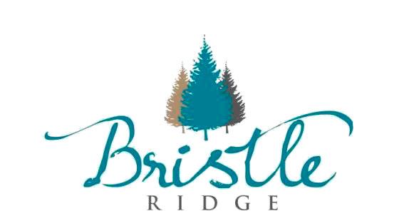 Bristle-Ridge-Logo-Main.jpg