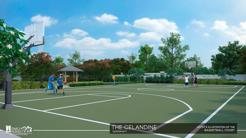 the-celandine-basketball-court