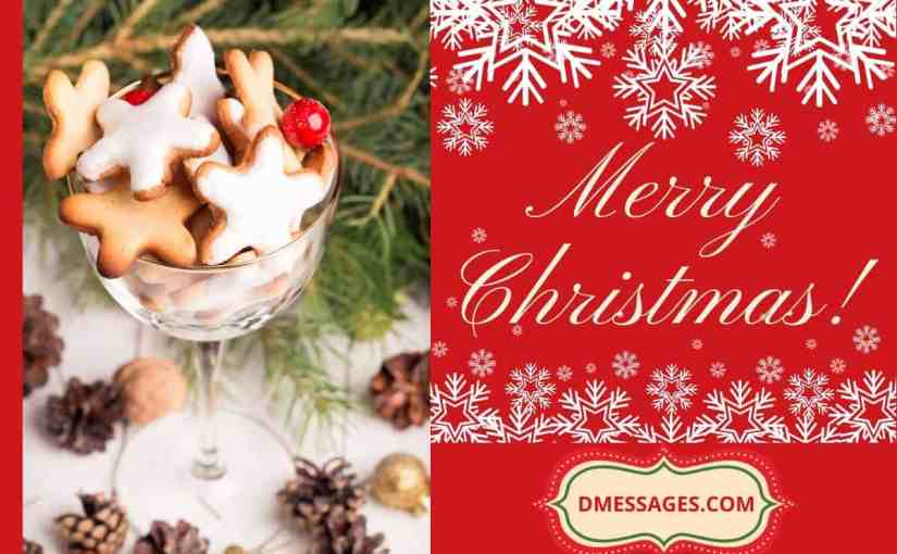*BEST* 350+ Merry Christmas Wishes Text Messages   Christmas SMS