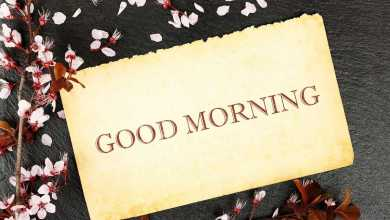 Photo of *BEST* 200+ Good Morning Wishes Messages and Quotes