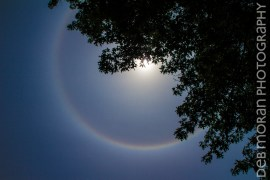 22 Degree Halo Around the Sun