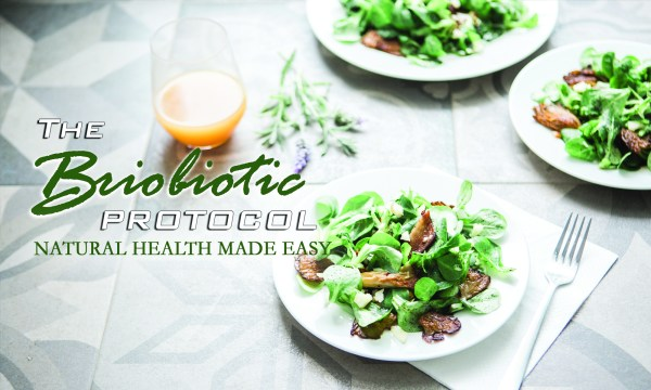 The Briobiotic Protocol: Natural Health Made Easy - DMR ...