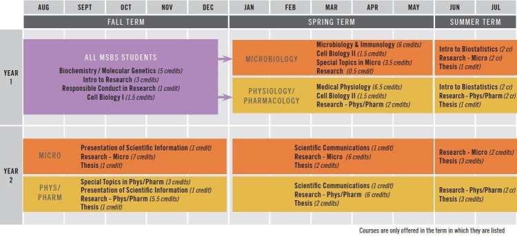 MSBS Strip Chart
