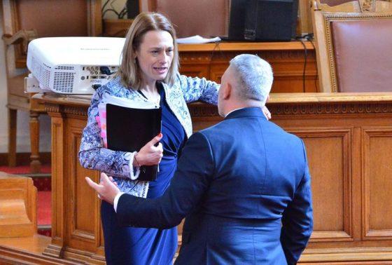 Преди дебата Николай Хаджигенов и Ива Митева представиха два законопроекта за изменения на закона за обществените организации.