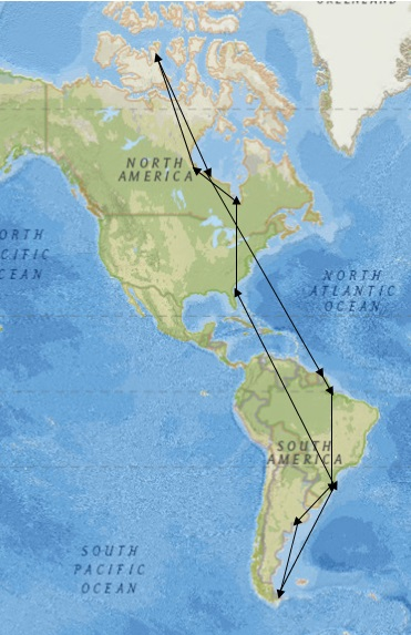 This image, a collaborative effort between SCDNR, Ron Porter, Larry Niles, and the U.S. Fish and Wildlife Service, shows the one-year migration path of a red knot.