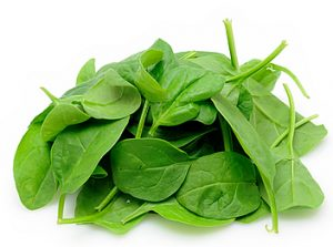 use-of-leaves-spinach-leaves