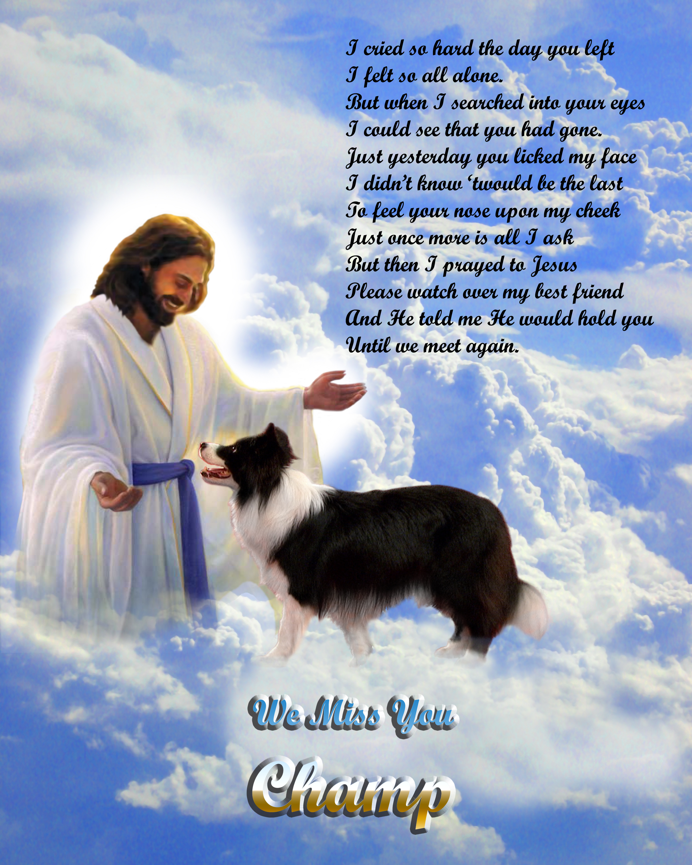Admin, Author at Do Dogs Go To Heaven?