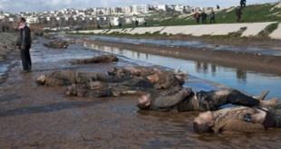 مقالات - مجزرة نهر قويق