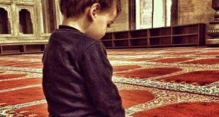 الأسرة المسلمة - وأمر أهلك بالصلاةِ واصطبِر عليها