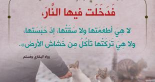 أخلاقنا الإسلامية - الرحمة والرفق بالحيوان