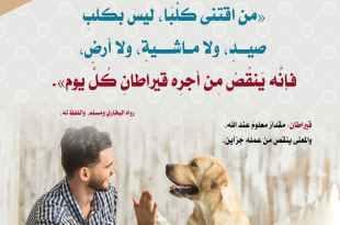آداب إسلامية - شروط اقتناء الكلب