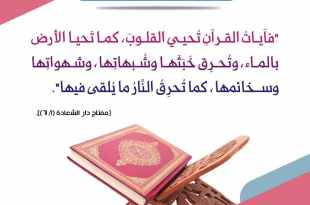 تدبرات - هل قرأت وردك القرآني اليوم؟