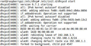 DNS no Raspberry - DHCPCD