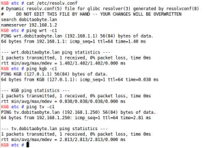 pings - DNS no Raspbberry