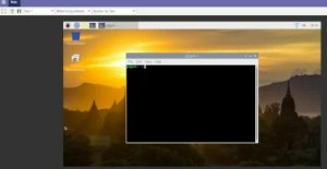 DWS Remote Control - desktop