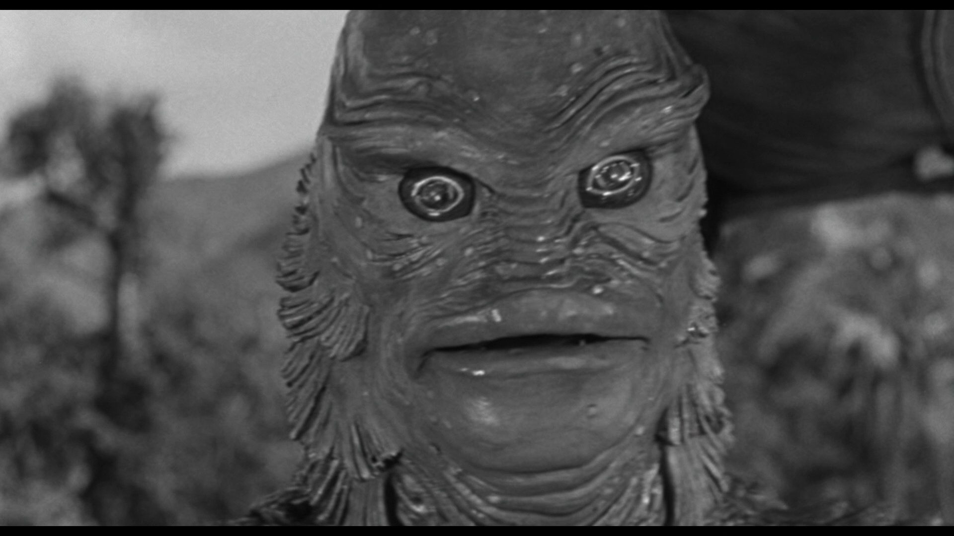 Creature From The Black Lagoon 3d Review
