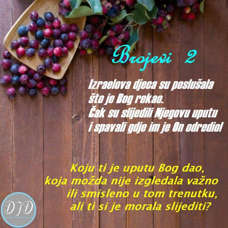 BR-pit 2