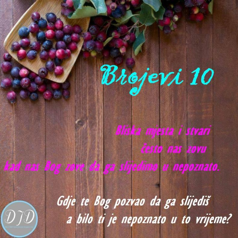BR-pit 10
