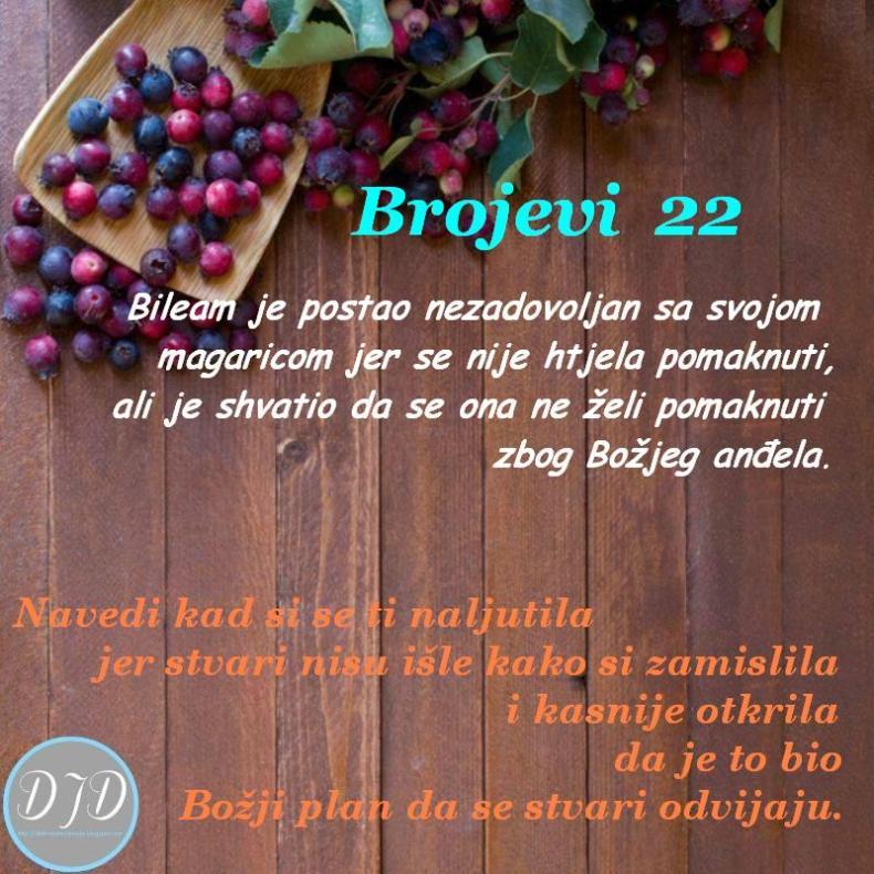 BR-pit-22