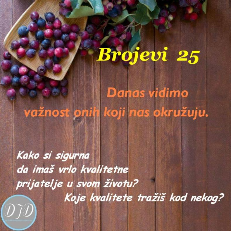 BR-pit-25