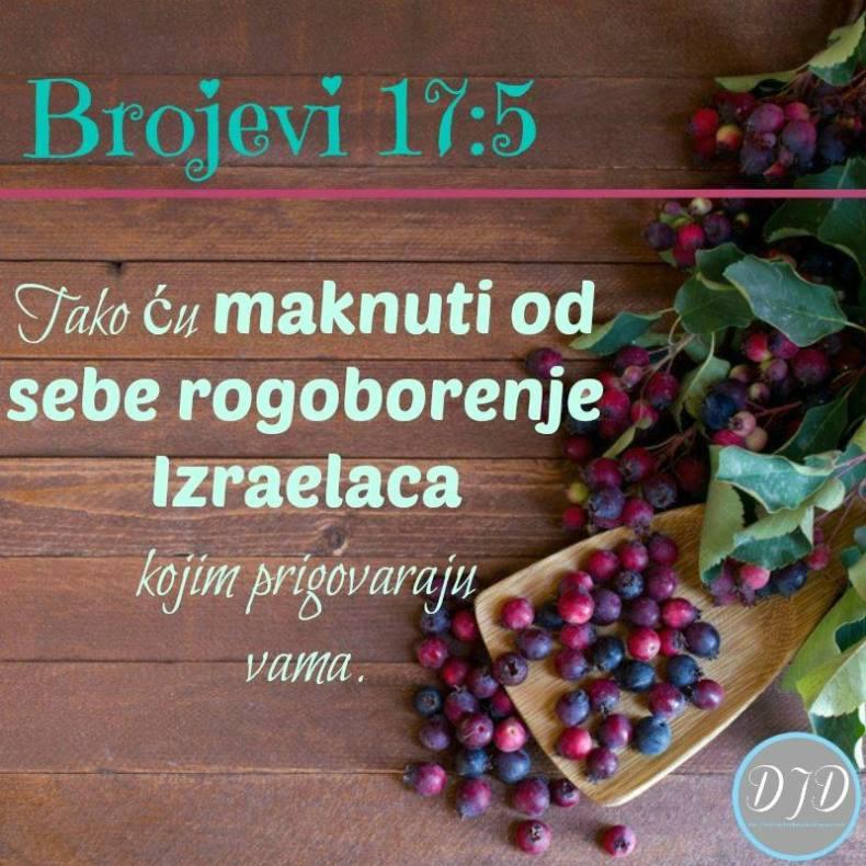 BR-stih 17