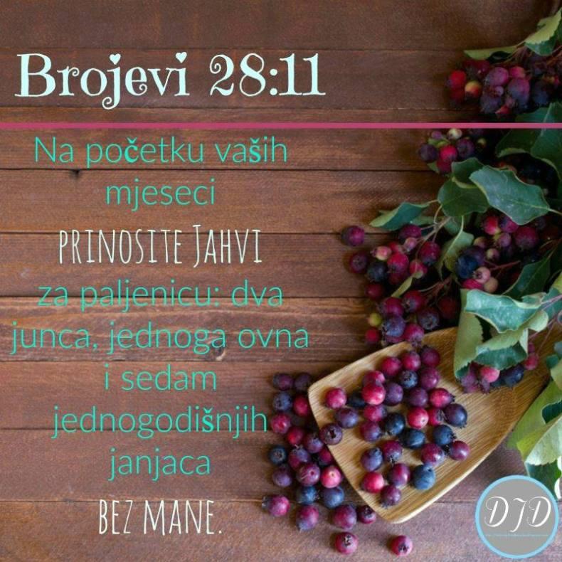 BR-stih 28