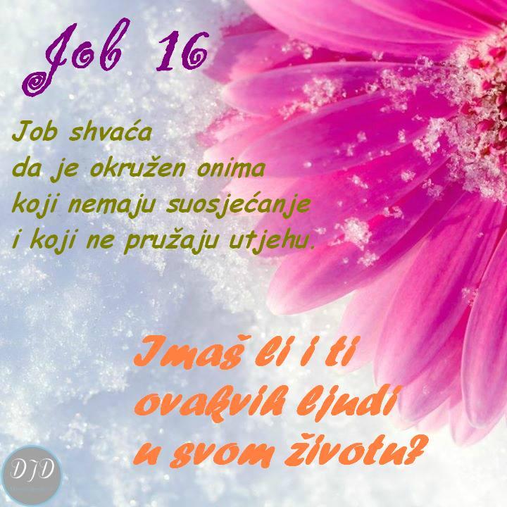 pit - Job 16