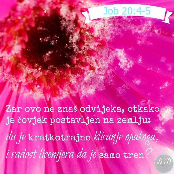 stih - 20
