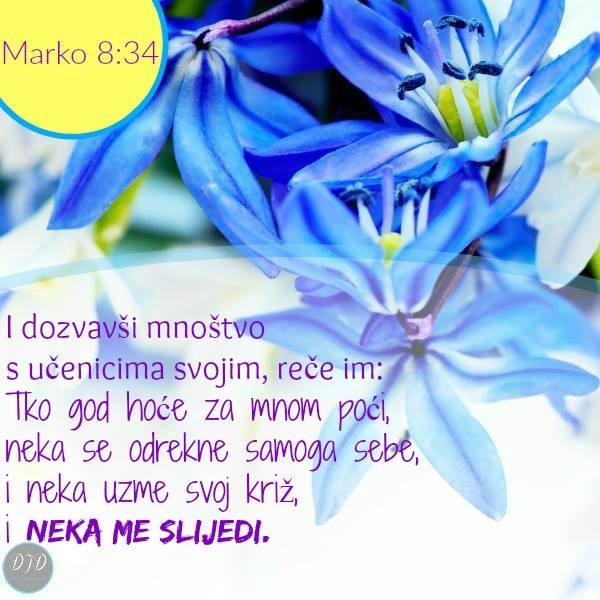 stih - 8