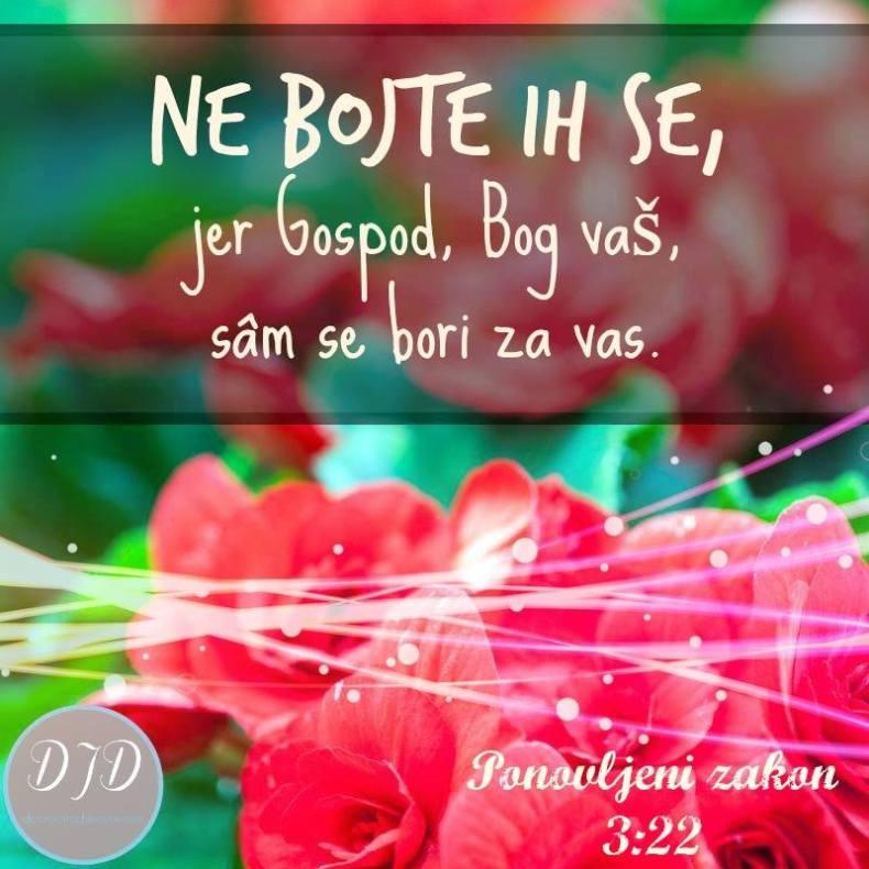 Pnz - stih 3